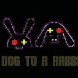 a dog to a rabbit