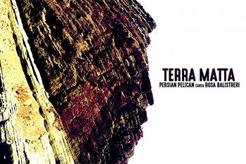 "Persian Pelican ""Terra Matta"""