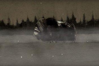 """Un'immagine del video di """"L'altrove"""" di Gianni Maroccolo feat. Edda"""