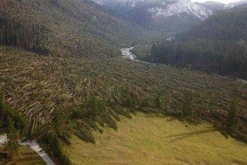 Un'immagine delle Dolomiti bellunesi/ Foto di vaiawood.eu