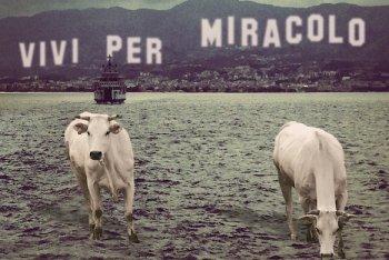"""La copertina di """"Vivi per miracolo"""" degli Spread"""