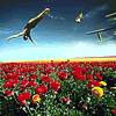 album Un mondo di nulla - Bluxenia