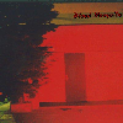 album Demo - Blood Mosquito