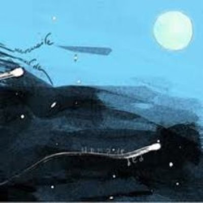 Unmade Bed The Loony Crowes Hoohaywire In The Shadows Of The Gigantic Moon Ascolta