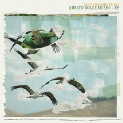 album Questo dolce museo EP - Alessandro Fiori