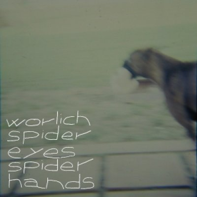 album Spider Eyes Spider Hands - Worlich