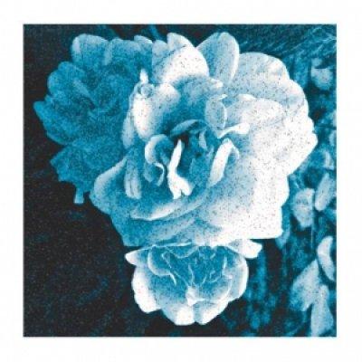 album Heartbeat War Drum - Ecole du Ciel