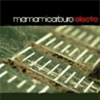 album Electro - Mamamicarburo
