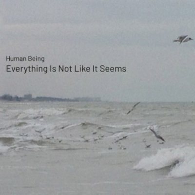 album Everything Is Not Like It Seems - Human Being