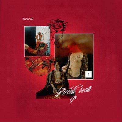 album Piccoli Boati - Tananai