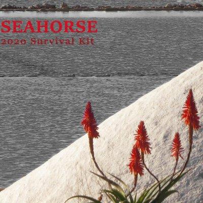 album Seahorse 2020 Survival Kit Compilation