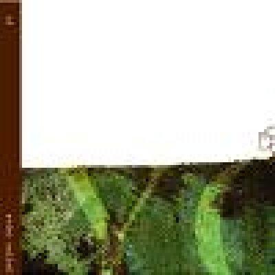 album YC - Yellow Capra