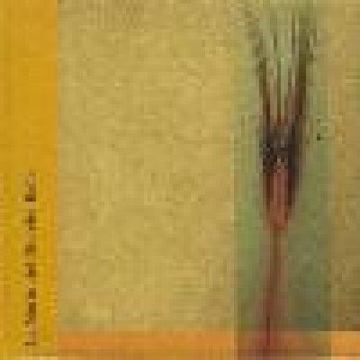 album La notte del Dio che balla - Split