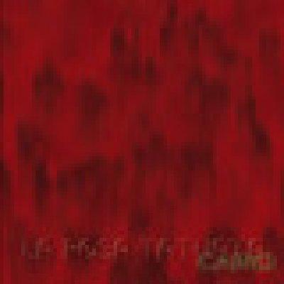 album CAINO - La Rosa Tatuata