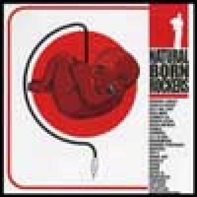 album compilation - NATURAL BORN ROCKERS - Kodama