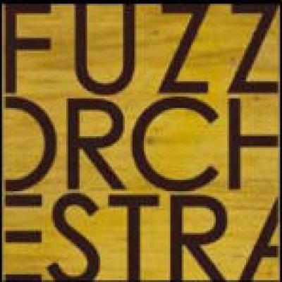 album s/t - Fuzz Orchestra