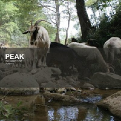 album So quiet ep - Peak