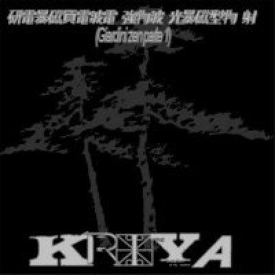 album GIARDINI ZEN PARTE 1 - Kriya