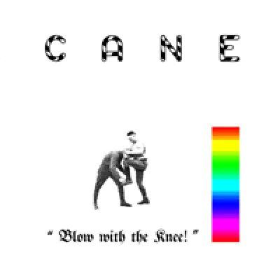 Cane - News, recensioni, articoli, interviste
