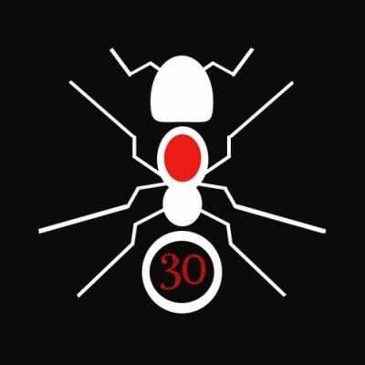 30 formiche