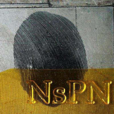 Nova sui prati notturni - News, recensioni, articoli, interviste