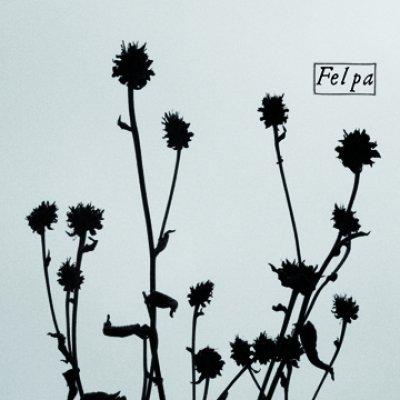 Felpa - News, recensioni, articoli, interviste