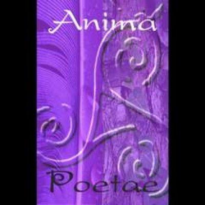 Anima Poetae - News, recensioni, articoli, interviste