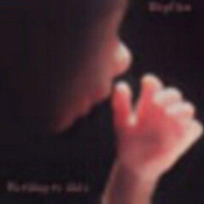 Replica - Discografia - Album - Compilation - Canzoni e brani
