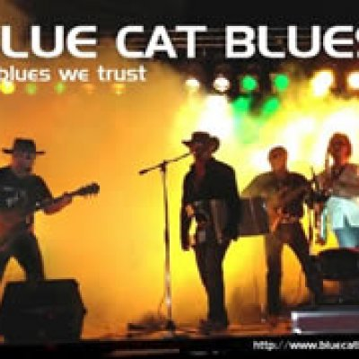 Blue Cat Blues Foto gallery