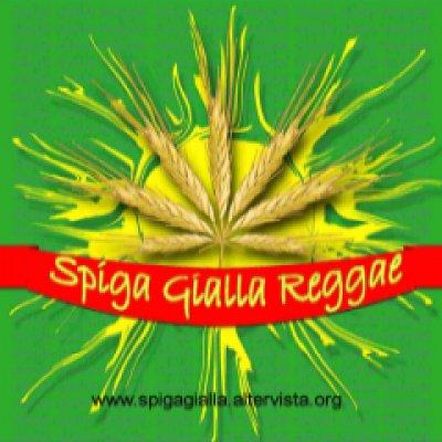 Spiga Gialla Reggae Foto gallery