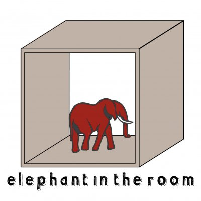 Elephant in the room Early morning Ascolta