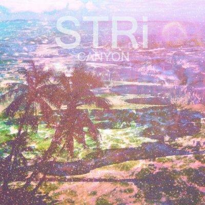 STRi Foresta (BeForest cover) Ascolta