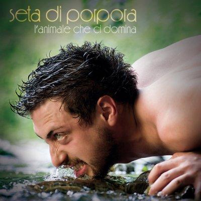 Seta Di Porpora Foto gallery