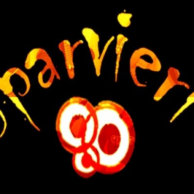 Biografia Sparvieri