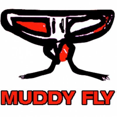 Muddy Fly Shame Testo Lyrics