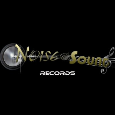 Noise and Sound Records